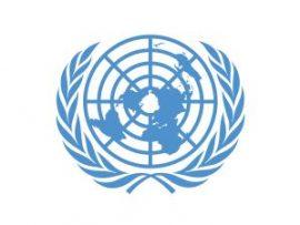 UN Commissions